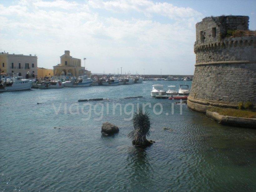 il porto turistico e dei pescatori