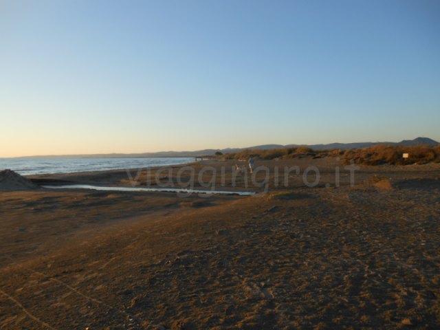 la spiaggia dell'Oasi