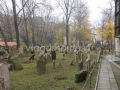 l'antico cimitero ebraico