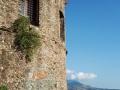 torre-tonda
